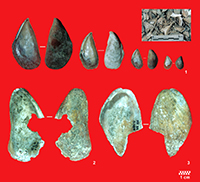 20.000 años comiendo mejillones
