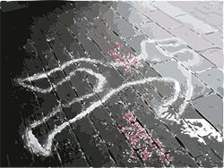 Foto de la noticia La UNED presenta su nuevo Grado en Criminología