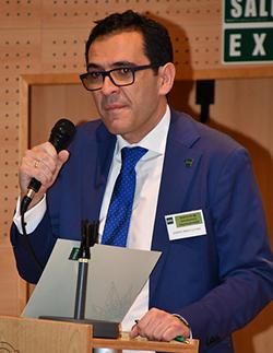 Alberto Mingo